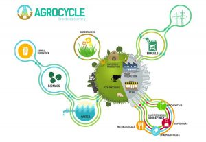 AgroCycle addresses the 'circular economy' by reducing waste all along the chain, and utilising waste as a feedstock for downstream industries such as pharmaceuticals and biochemicals.